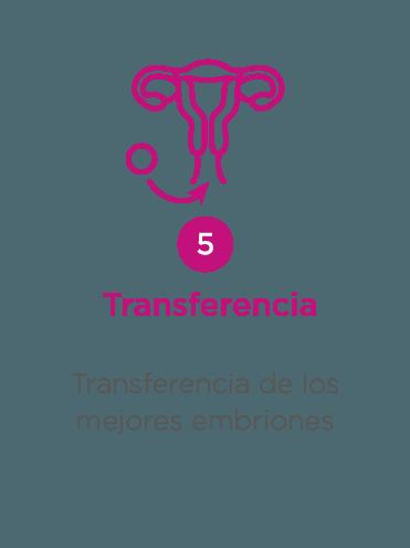 ovodonacion - paso 5: transferencia